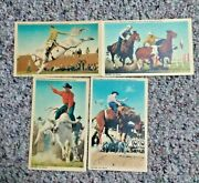 4 Rodeo Stryker Fort Worth Linen Postcards Bill Linderman Todd Whatley Thompkins