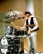 Beatles Ringo Starr Signed 8 X 10 Color Drumming Photo Darted 2005