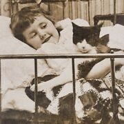 Tabby Cat Little Girl Sleeping In Bed Chums Bedtime Victorian Photo Stereoview
