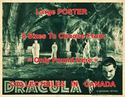 Dracula 1938 Women In Dungeon Coffin Cobwebs = Movie Poster 8 Sizes 17 - 3 Feet