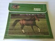Vintage 80and039s-90and039s Mead Trapper Keeper Notebook Horse 3-ring Binder