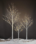 Lightshare 4 Feet 6 Feet And 8 Feet Birch Tree,warm White, For Home,pack Of 3, F