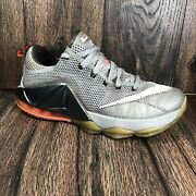 Nike Lebron 12 Low Earned Wolf Grey Menand039s Basketball Shoes 724557 014 Size 9
