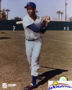 Ernie Banks 8x10 Glossy Photo Cubs Pinstrip Holding Bat In Top Loader