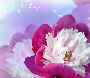 3d Flowers Large Poster 0563 Wall Paper Wall Print Decal Wall Deco Aj Wallpaper