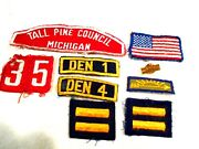 Vintage Cub Scout Bsa Arrow Of Light Pin And Patch + Other Den Patches