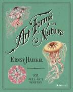 Ernst Haeckel Art Forms In Nature 22 Pull-out Posters By Ernst Haeckel Englis