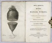 Beta Depicta Or Remarks On Mangel Wurzel, Thomas Newby, 1828 With Engraving