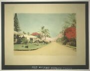 1920's Hand Colored Photo Of Red And Pink Shower Trees And Residences In Hawaii
