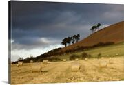 Hay Bales In A Field Northumberland Canvas Wall Art Print Countryside Home