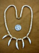 G170-116 Five Gold Capped 1 Alligator Tooth Teeth Aceh Bovine Bone Necklace