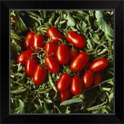 Processing Tomatoes In Field, San Black Framed Wall Art Print, Vegetables Home