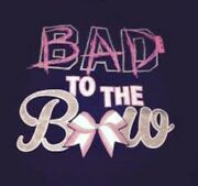 Bad To The Bow Cheerleading Bling Crowd Pleasing Stunt Building Beauty Big Smile
