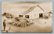Exaggerated Pigs Farm Tractor Antique Real Photo Postcard Rppc Montage Collage