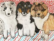 Sheltie Puppies 13 X 19 Art Print Dog Collectible Signed By Artist Ksams Vintage
