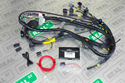 K-tuned K-series Tucked Engine Harness W/ Integrated Power Wire Rsx Type S 02-04