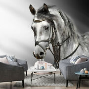 3d White Horse Zhua1711 Wallpaper Wall Murals Removable Self-adhesive Amy