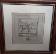 Thomas Butler 1753 Starling From Book Of Horse Prints In Wooden Frame