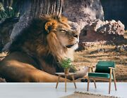 3d Lion Rest A274 Animal Wallpaper Mural Self-adhesive Removable Amy