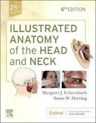 Illustrated Anatomy Of The Head And Neck 6th Edition By Margaret J. Fehrenbach