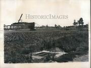 1947 Press Photo Vegetable Grown Amid Ruins Of German Plant Stripped For Russia