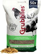 Grubblies Original Usa And Ca - Natural Grubs For Chickens, Healthier Than Mealwor