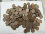 Large Lot 300 Indian Head Cents Average Circulated Good-vg Ihc Q4rj