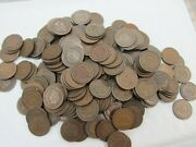 Large Lot 250 Indian Head Cents Average Circulated Good-vg Ihc Q4rk