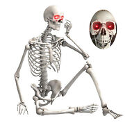 5.5ft Halloween Posable Life Size Prop Skull Skeleton Sound Activated Led Eyes