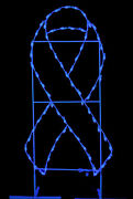 6' X 3' Blue Awareness Ribbon Ground Mount Lit With Leds
