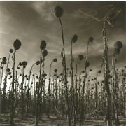 Anastasis [digipak] By Dead Can Dance Cd, 2012, Relativity Label Signed
