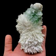 Green Apophyllite Crystals With Scolecite Natural Mineral Specimen Tuc-f7