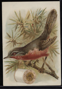 Victorian Trade Card 1880s J And P Coats Six Cord Thread Cotton Sewing Vtc-c80