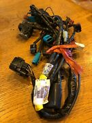 Triumph Motorcycles Engine Harness T2500940