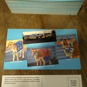 157--elsie The Cow--bordens--vintage Collectible Advertising Postcards--all Nos
