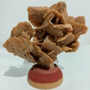 Desert Rose Selenite Crystal Stone Mineral Cluster Stand Decorative Mother Gift
