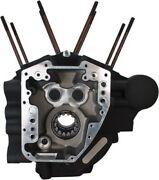 Sands Cycle Black Twin Cam High Performance Engine 4.125in Bore Case