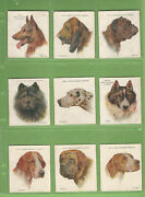 Ff. Part Set 39/40 Of 1927 Dogs Wills Cigarette Cards - Series 1 And 2