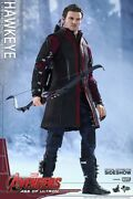 Hot Toys 1/6 Scale Figures Age Of Ultron - Hawkeye
