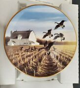 Canada Geese In The Autumn Field Plate Classic Waterfowl The Ducks Unlimited