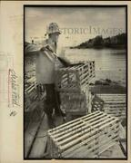 1984 Press Photo Lobsterman Chris Ford Of Old Greenwich Shown With His Traps