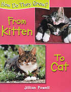 From Kitten To Cat How Do They Grow By Powell Jillian