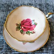 Rare Paragon R. Johnson Pink Teacup And Saucer Red Cabbage Rose Artist Signed