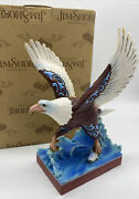 Jim Shore Heartwood Creek You Have The Strength To Soar Bald Eagle Bird Fish