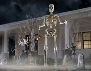 12 Foot Ft Tall Giant Skeleton W/ Animated Lcd Eyes Halloween Prop Sold Out 🔥🔥