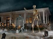 12 Foot Ft Tall Giant Skeleton W/ Animated Lcd Eyes Halloween Prop