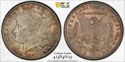 1891 Cc 1 Morgan Dollar Pcgs Ms 64 Uncirculated Cac Approved Toned