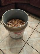 Huge Lot Of 16,500 + Wheat Cents Penny Coins 1910's To 1950's 114 Lbs One Cent