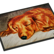 Caroline's Treasures Amb1202mat Red Longhaired Dachshund Indoor Or Outdoor Mat