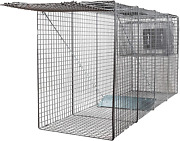 Animal Trap 58x26x17 - Best Humane Animal Trap For Large Dogs Foxes Coyot